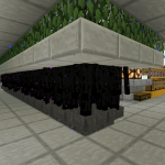 Enderman farm